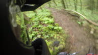POV helmet mount of mountain biker riding through forest trail