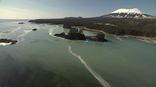 Herring sperm spreads along the coast near Sitka, Alaska. Available in HD.