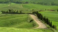 High angle long shot Mediterranean cypress tree-lined dirt road winding through rolling hills /Val D'Orcia, Tuscany
