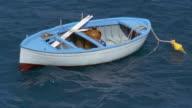 High angle medium shot blue boat floating in water / Amalfi, Campania, Italy