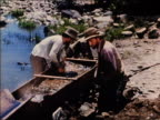 1965 high angle medium shot gold prospectors shoveling and breaking up dirt in wooden boxes / 'The Gold Rush' / AUDIO