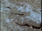 CU High angle salt deposits in sand, Gujarat, India