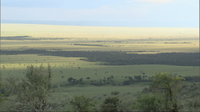 High angle view over huge landscape, pan across to ridge, Kenya, Africa