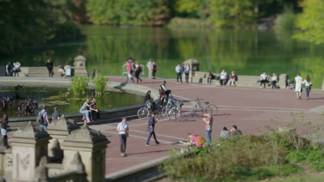 High angle wide time lapse shot of people in park / New York, New York, United States
