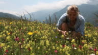 Hiker bends down to embrace flowers in meadow, walks on