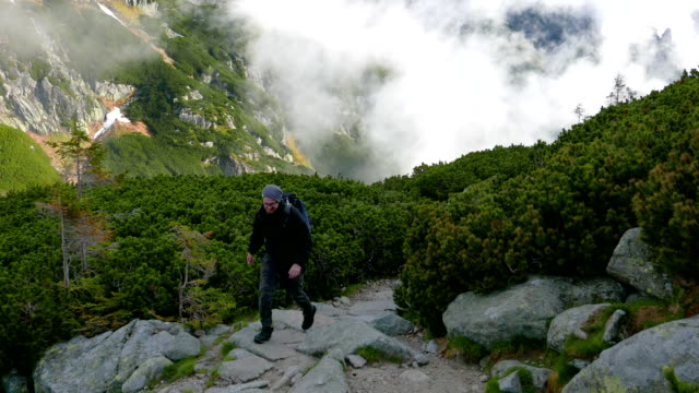 Hiker on the ridge