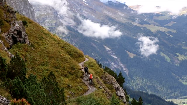 Hikers ascend along path through mountain meadow