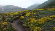 POV hiking Big Sur foot hills