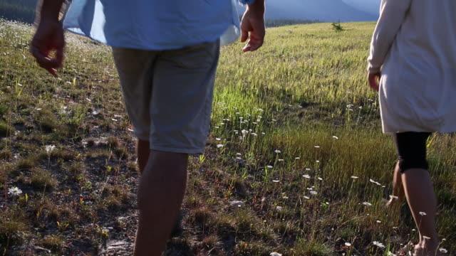 Hiking couple walk through alpine meadow, mountains