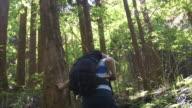 Hiking in Nagoya (slow motion)