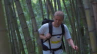 Hiking through bamboo forest (slow motion)