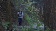 Hiking through Japan