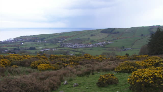 Hills and moors, pan to sea and distant town, County Antrim, Northern Ireland
