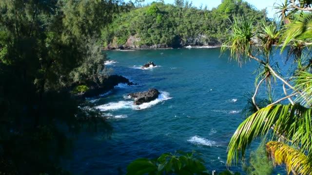 Hilo Hawaii Big Island outlook at Onomea Bay