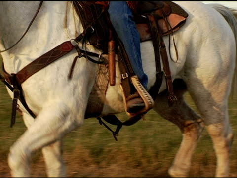 Hispanic Cowboys reiten White Horse auf Texas Ranch