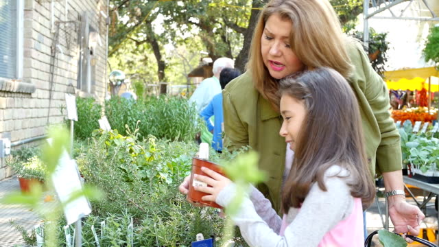 Hispanic mother and young daughter examine different types of herbs at local farmer's market or garden center