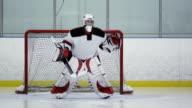 Hockey Player Goalie