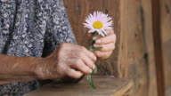 Holding Hands. Detail of a Senior Woman Hands with Flower