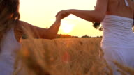 HD SUPER SLOW-MOTION: Holding Hands In Field At Sunset