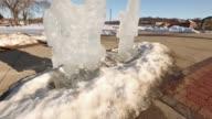 Holiday Season - Ice Sculptures