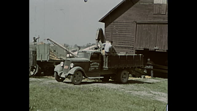 1943 Home Movie - Men using tractors and trucks for wood chipping on a farm
