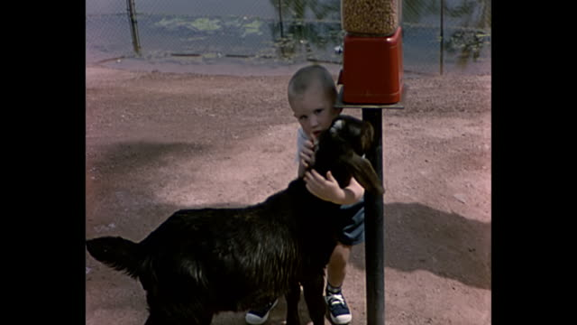1961 Home Movie of boy at Petting Zoo