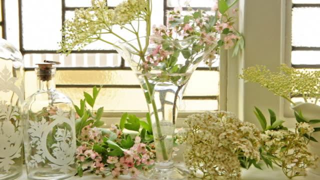 Home Window blossom  NA