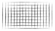 RULED - horizontal and vertical : (LOOP)