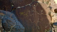 Horned lizard Ancient Native American Indian Rock Art at Petroglyph Lake Hart Mountain National Antelope Refuge 36