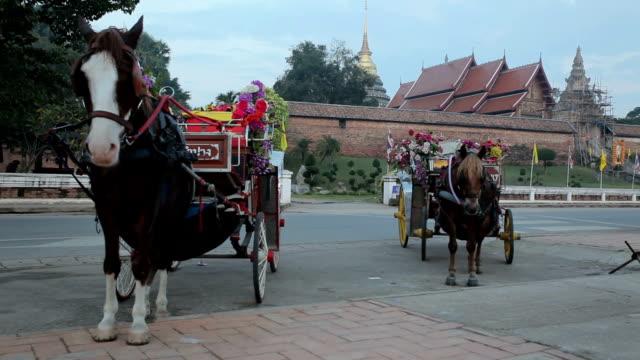 Pferdekutsche im Tempel Phrathat Lampang Luang in Lampang, Thailand