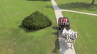 AERIAL Horse carriage ride around the castle park