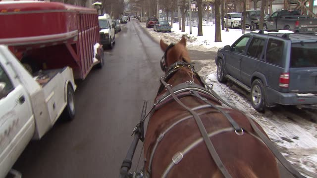Horse drawn carriage on February 19 2014 in Chicago Illinois