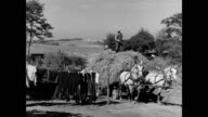 Horse drawn hay wagon arrives back on the farm / farmer's wife Hazel Parkinson hanging laundry on a washing line / hay wagon taken to the barn and...
