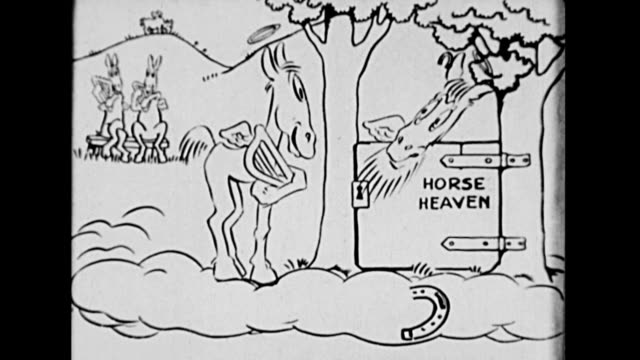 A horse is rejected from horse heaven
