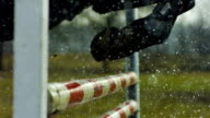 Horse jumping in the rain