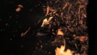 C/U Horse leg step in embers