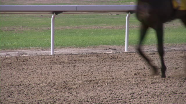 Horse Racing. Horseracing track and equipment.