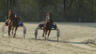 HD SLOW-MOTION: Horse Racing