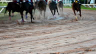 HD: corse di cavalli ritmo.