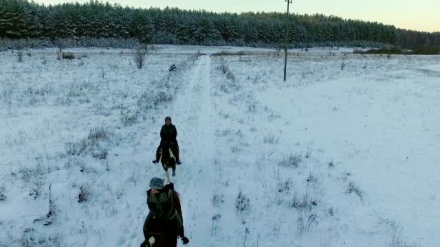 Horse ride in the winter field