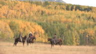 MS TS ZO Horse & Riders standing in front of Yellow Aspen Grove with Colorado Rocky Mountains and Wilson Peak / Telluride, Colorado, United State