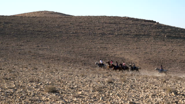 Horse riding in the Negev Desert