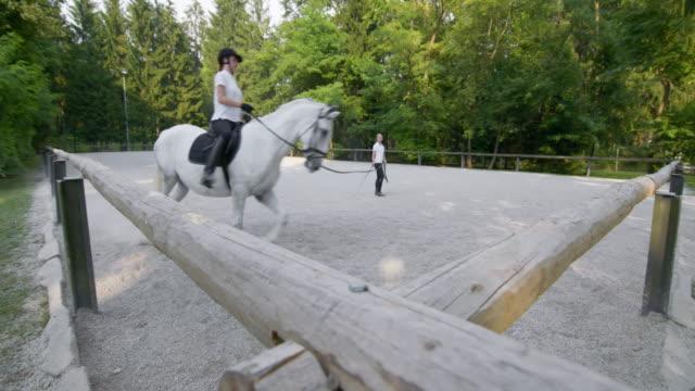 DS Horse riding practice on a longe line