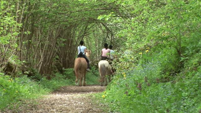 HD: Horse Riding