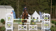 Horse with female rider jumping hurdles in sunshine