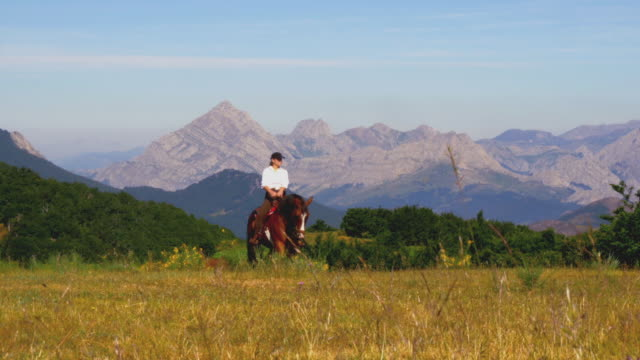 Horse woman riding in the mountains