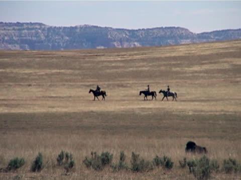 Horseback Riding Cross The Range