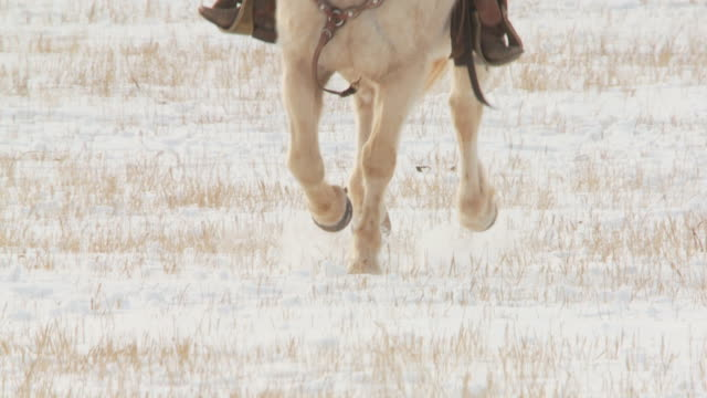 SLO MO MS Horses' hooves cantering towards camera in snow with cowgirl, low section / Shell, Wyoming, USA