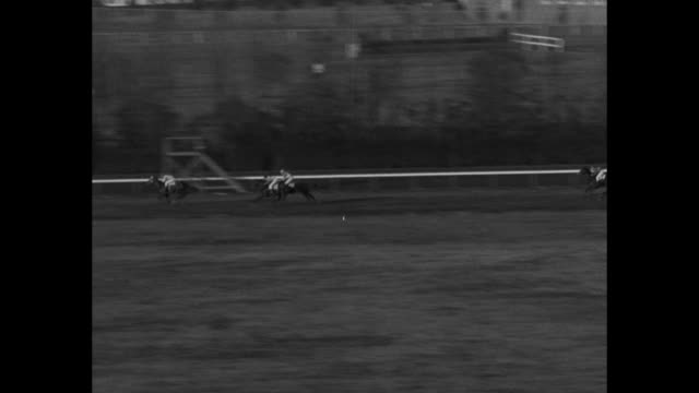 Horses running on back stretch of steeplechase race jump mound on dirt track as one falls and jockey is thrown / high and low angles of track and...