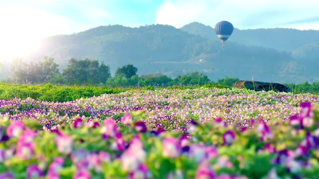 Mongolfiera su fiori di campo